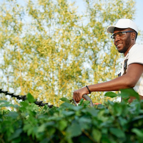 man in glasses using hedge trimmer