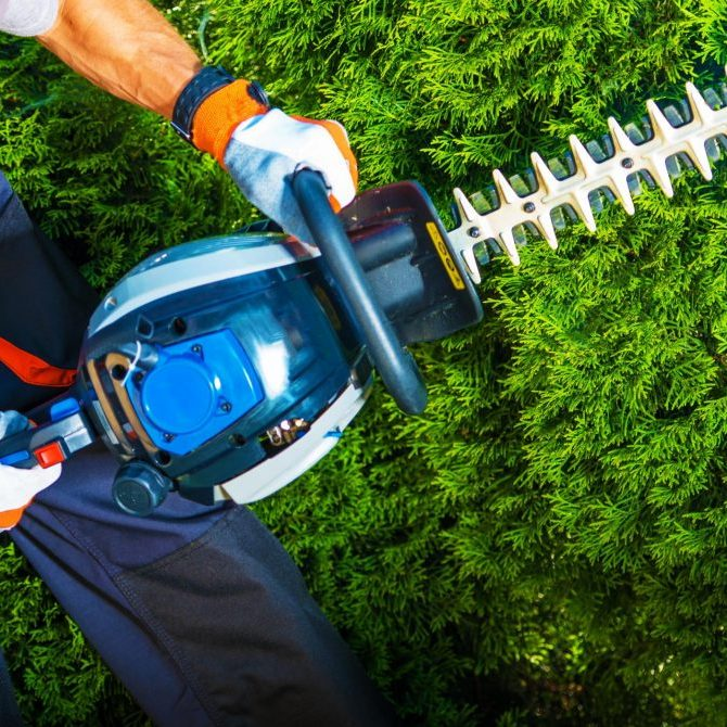worker using a hedge shear